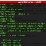 nmap detection port